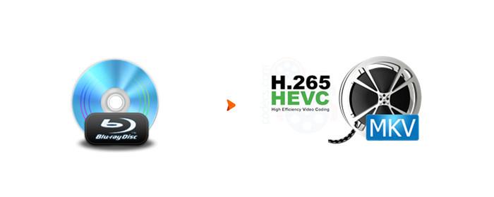 Blu-ray to H 265/HEVC MKV